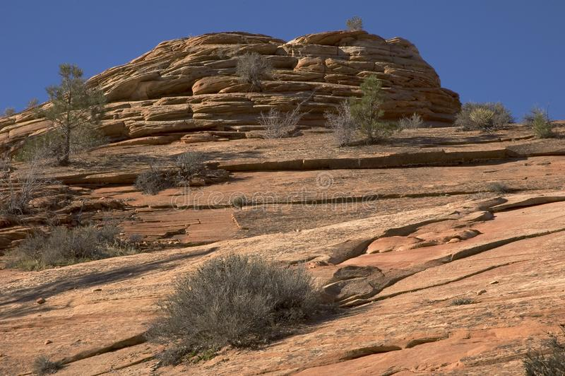 Canyon Landscape - Zion Stock Photo