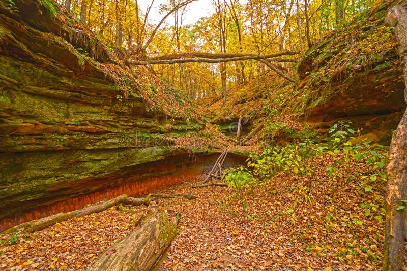 Canyon nascosto nella foresta di caduta fotografie stock