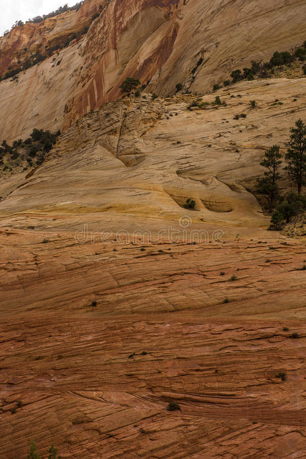 Canyon national de parc-Zion d'UT-Zion photo libre de droits