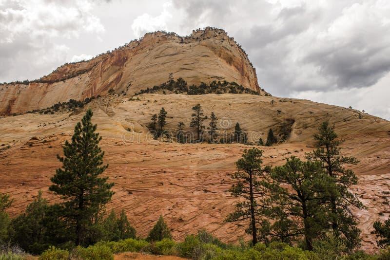 Canyon national de parc-Zion d'UT-Zion photo stock