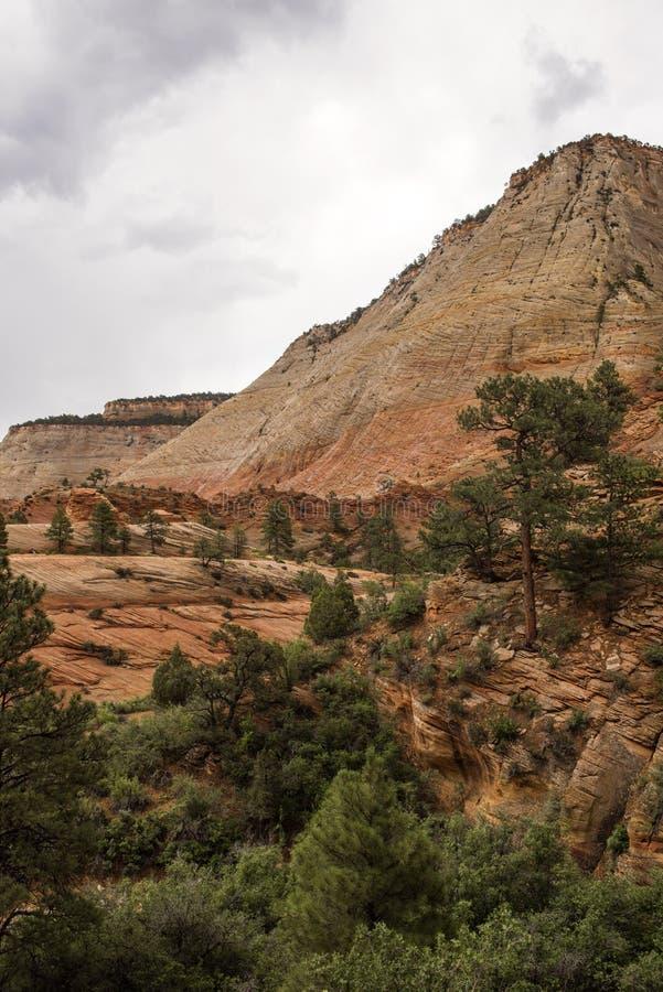 Canyon national de parc-Zion d'UT-Zion photos stock