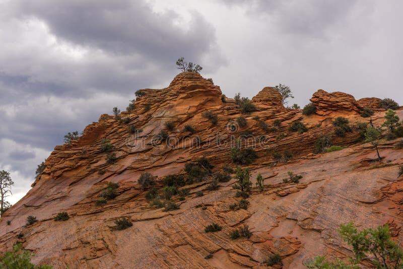Canyon national de parc-Zion d'UT-Zion images libres de droits
