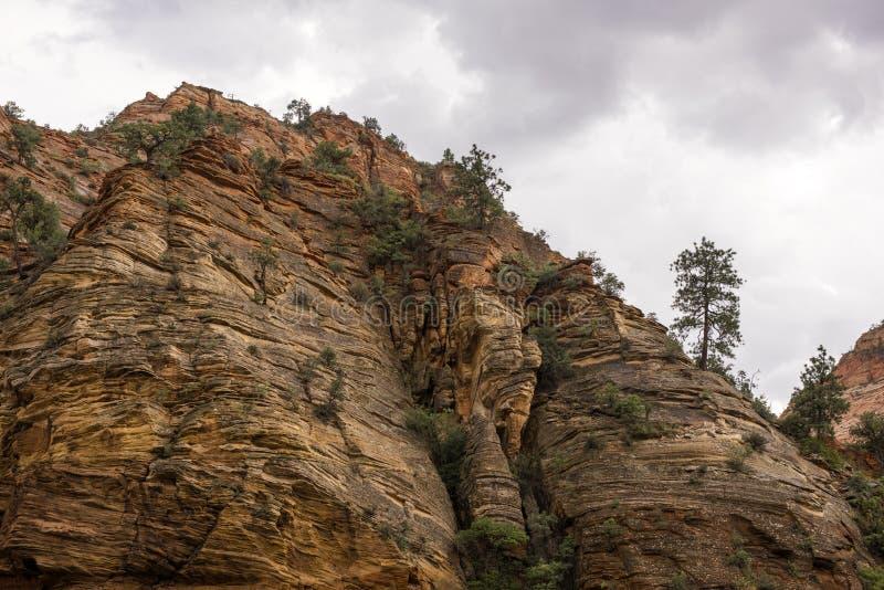 Canyon national de parc-Zion d'UT-Zion image libre de droits
