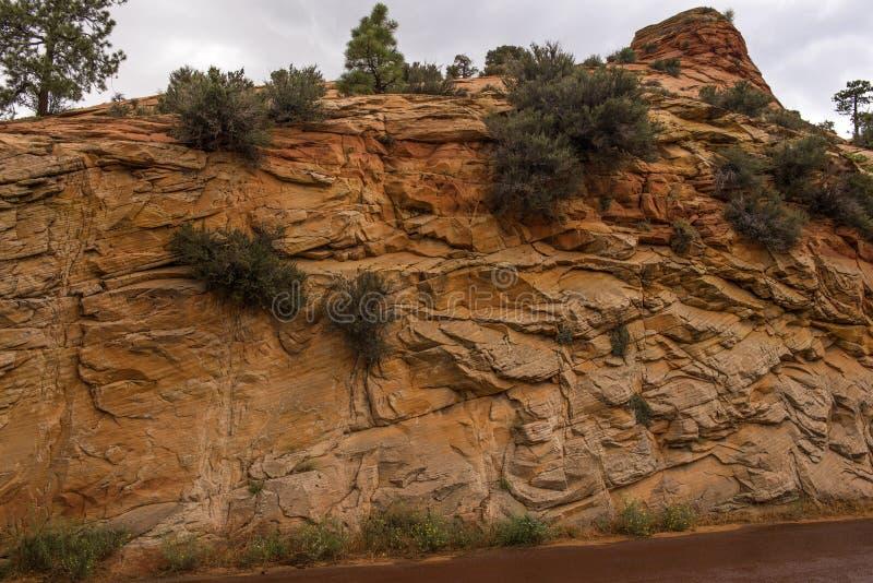 Canyon national de parc-Zion d'UT-Zion photos libres de droits