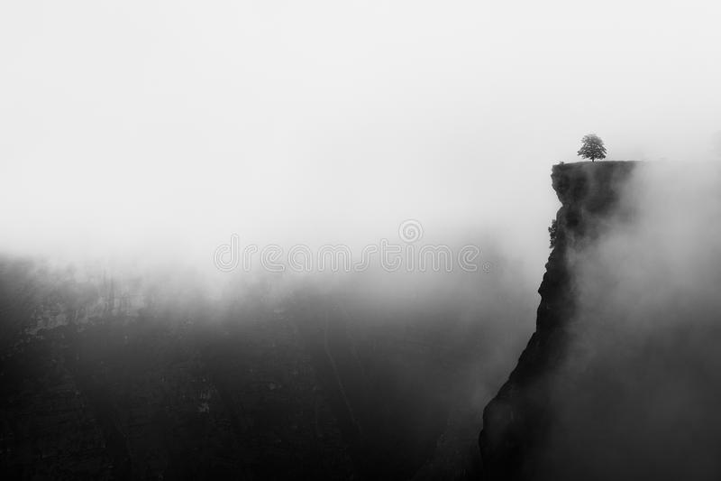 Canyon nebbioso con lo iin tagliente Delika della scogliera fotografia stock libera da diritti