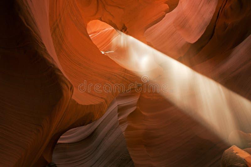Canyon più basso della scanalatura dell'antilope del raggio di sole immagine stock