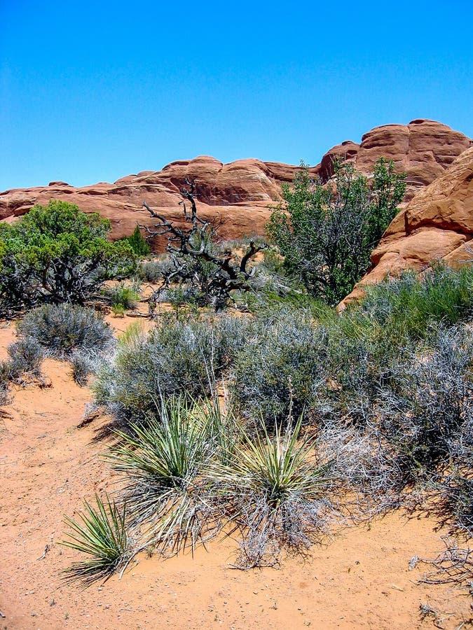 Canyon Rims Recreation Area stock photos