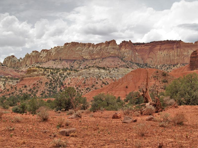Red Rocks of Canyon Rims stock photo