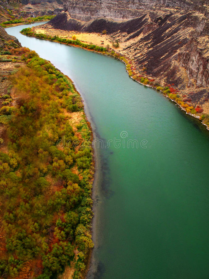 Canyon River with Fall Trees royalty free stock images