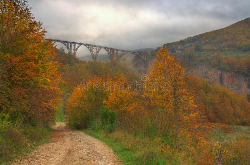 Canyon river Tara and Đurđevića Tara Bridge, Montenegro - autumn picture. Beautiful photography with mist, yellow and red colored trees, path and royalty free stock photo
