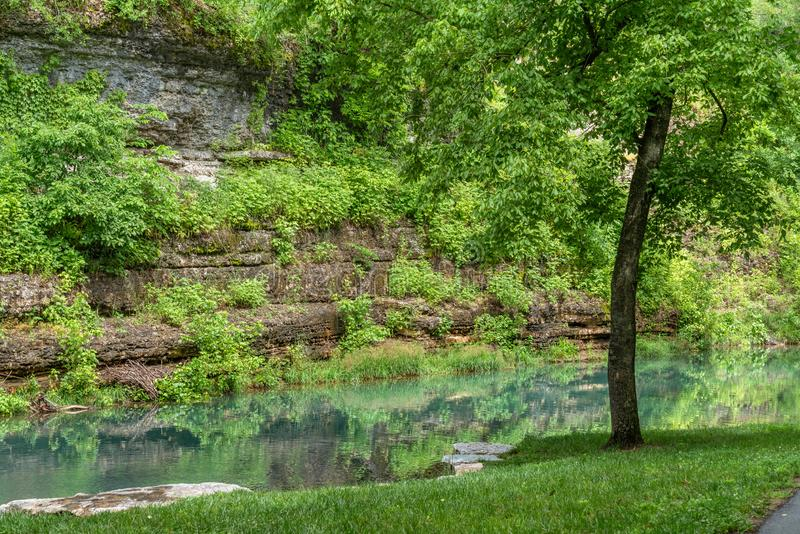 Canyon rock wall with reflections in green water. Of summer foliage stock photos