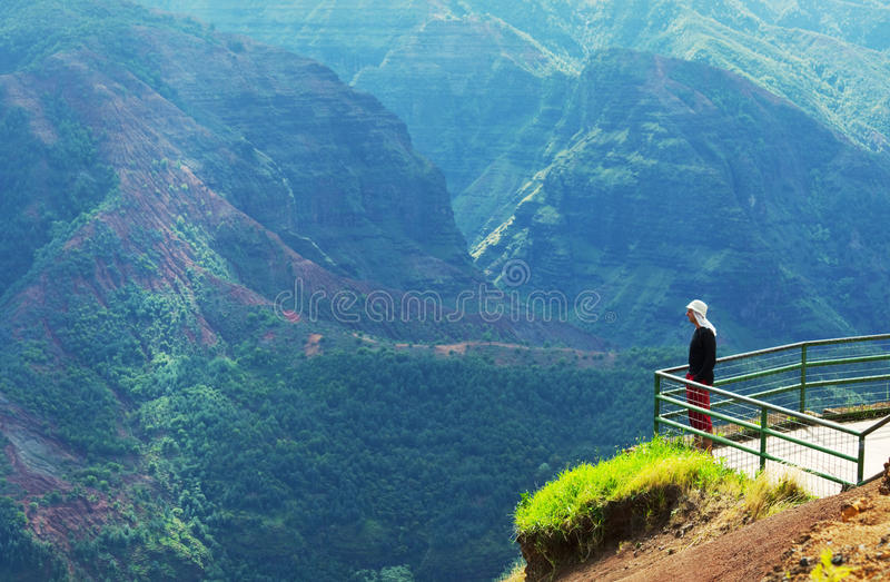 Canyon sur Hawaï photo libre de droits