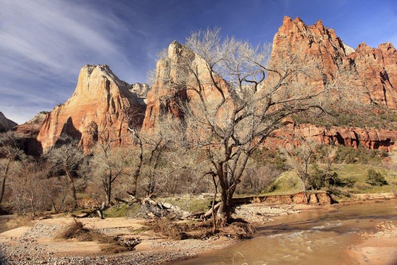 Canyon Utah di Zion del fiume del Virgin di Patricarchs della corte immagine stock