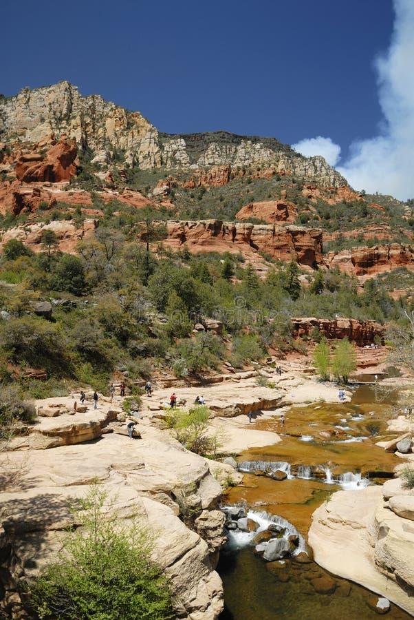 Canyon vicino a Sedona, Arizona dell'insenatura della quercia immagini stock