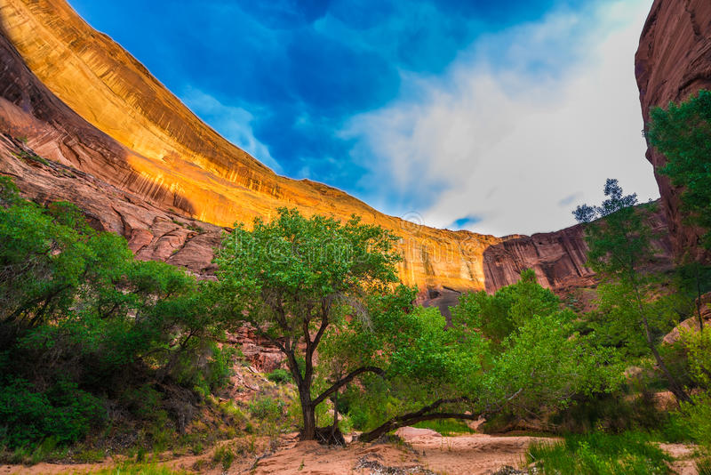 Canyon Wall Lid by sunset light Beautiful Coyote Gulch landscape royalty free stock images