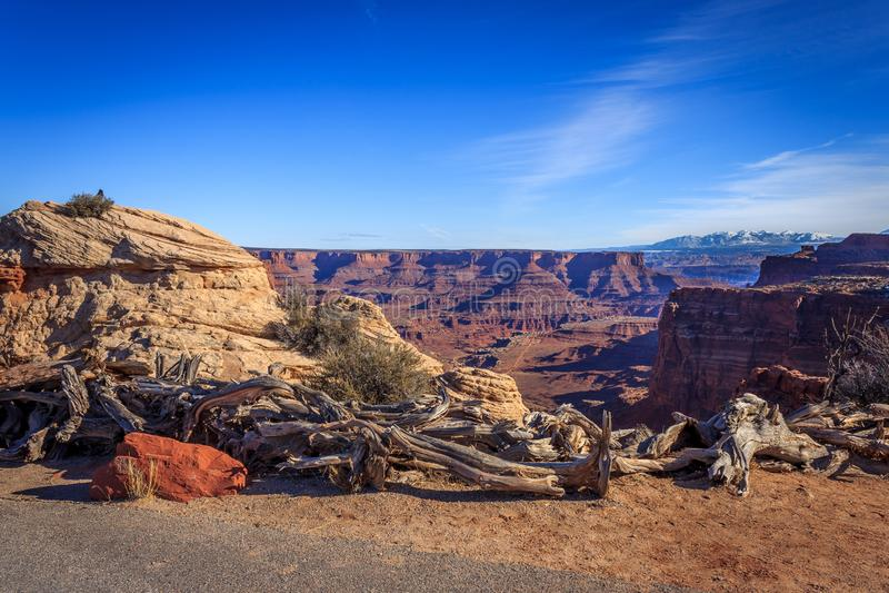 Canyonlands视图 库存图片
