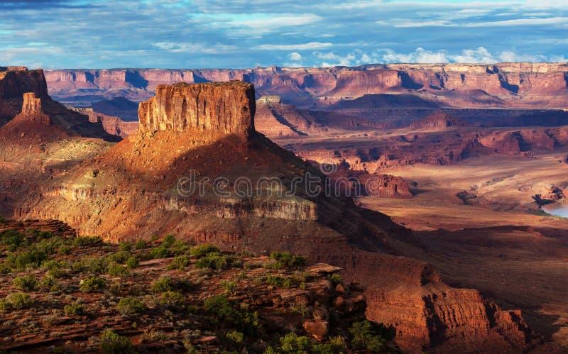 Canyonlands zdjęcia stock