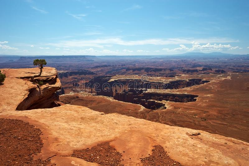 Download Canyonlands stock photo. Image of trail, waterless, hiking - 17382414