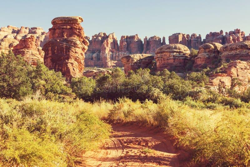 Download Canyonlands arkivfoto. Bild av vandring, bildande, natur - 76703646