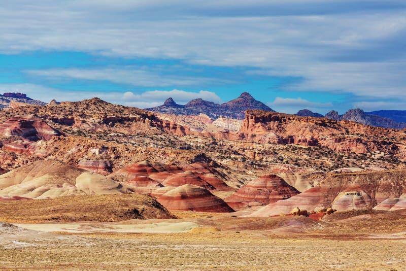 Canyonlands royaltyfri bild