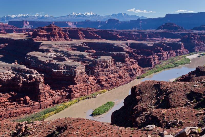 canyonlands gooseneck obywatela pk rd obręcza ut biel obraz stock