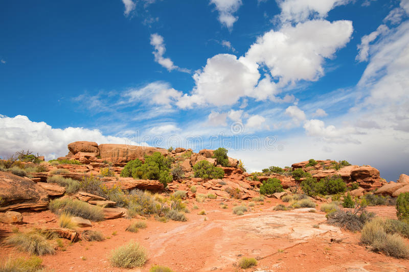 Canyonlands. Island of the sky of the Canyonlands Narional Park in Utah, USA royalty free stock photos