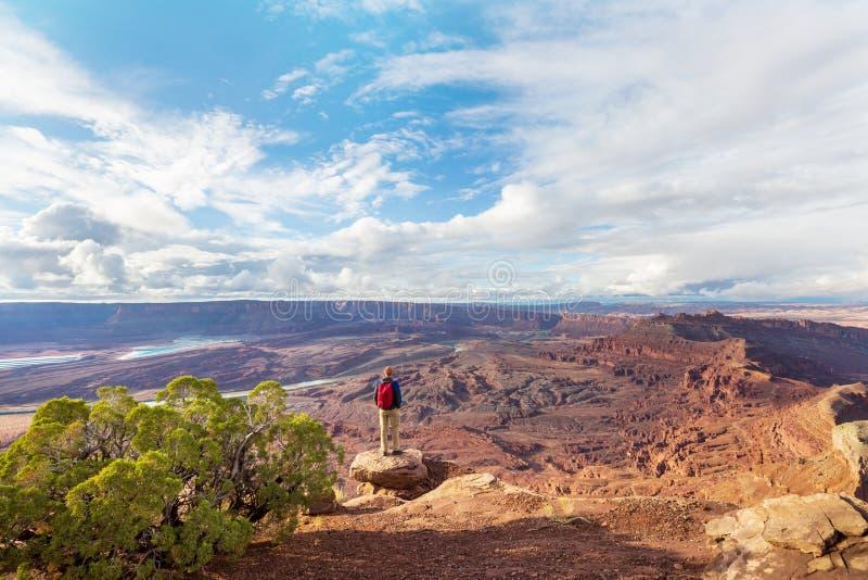 Canyonlands obraz stock