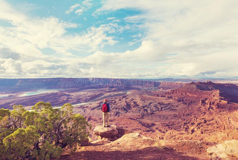 Canyonlands zdjęcia royalty free