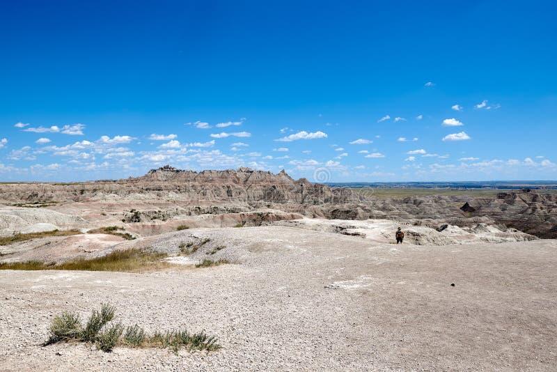 CanyonSouth Dakota arkivbild