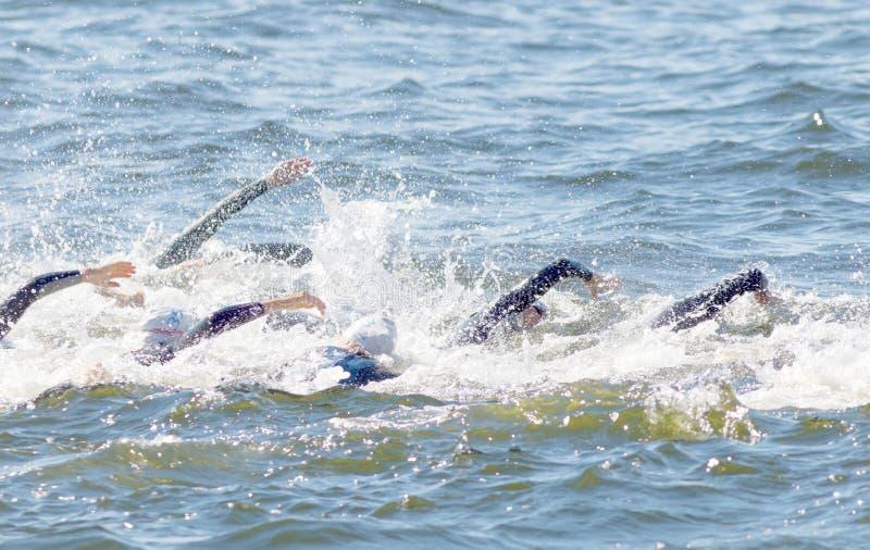 Caos dos braços da natação na água foto de stock royalty free