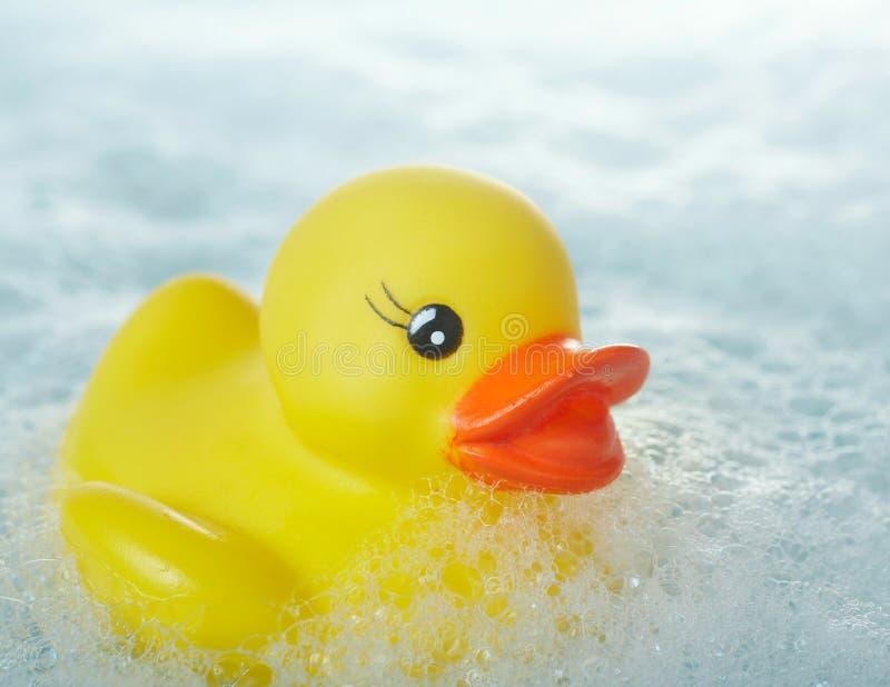 caoutchouc de canard photographie stock libre de droits
