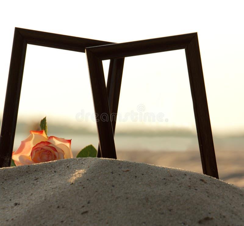 Download Capítulo con las flores imagen de archivo. Imagen de wooden - 41909773