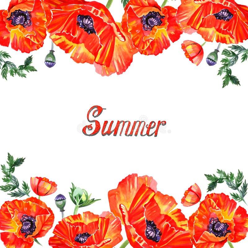 Capítulo con las flores rojas de la amapola de la acuarela saludo libre illustration