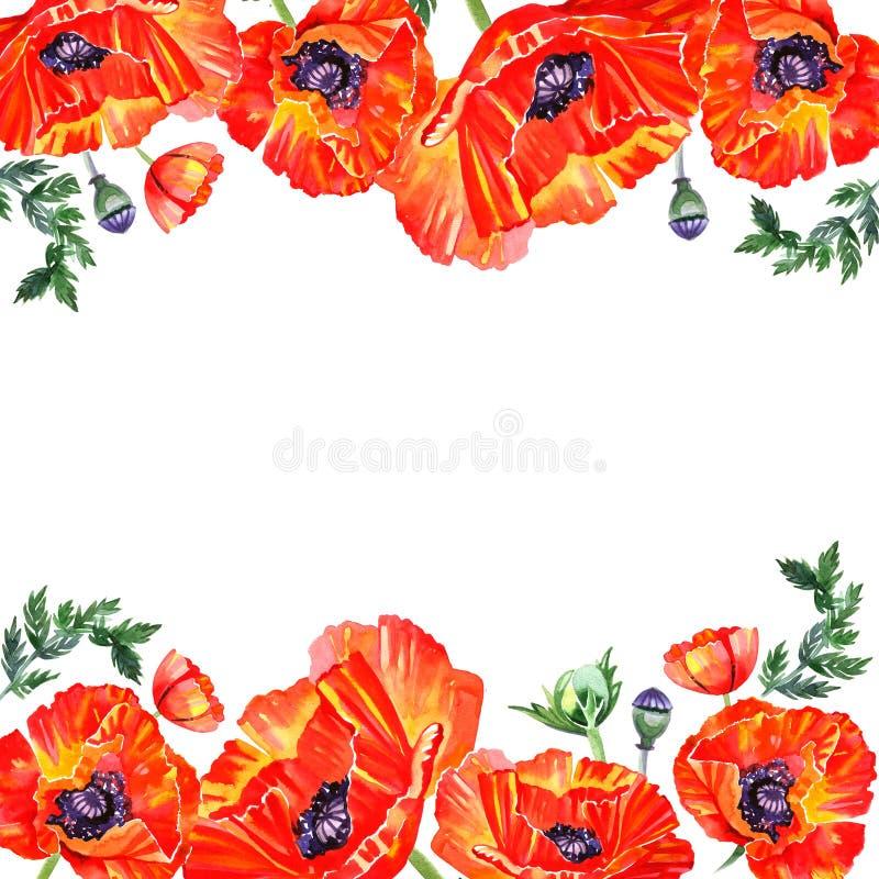 Capítulo con las flores rojas de la amapola de la acuarela Tarjeta de felicitación libre illustration