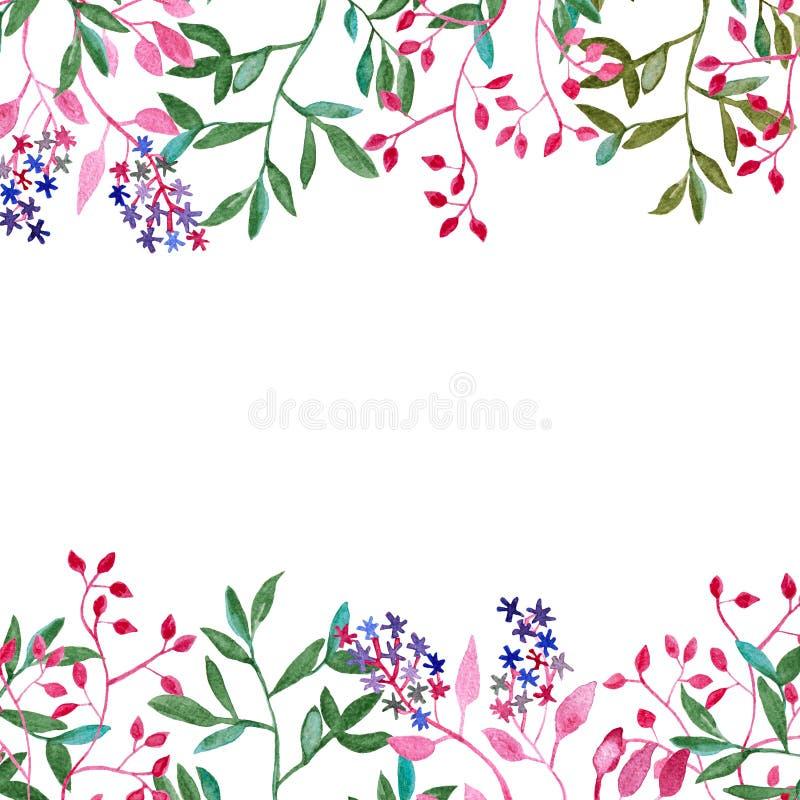 Capítulo con las flores y las hojas, pintura de la acuarela aislada en el blanco para los jefes y pies de página stock de ilustración
