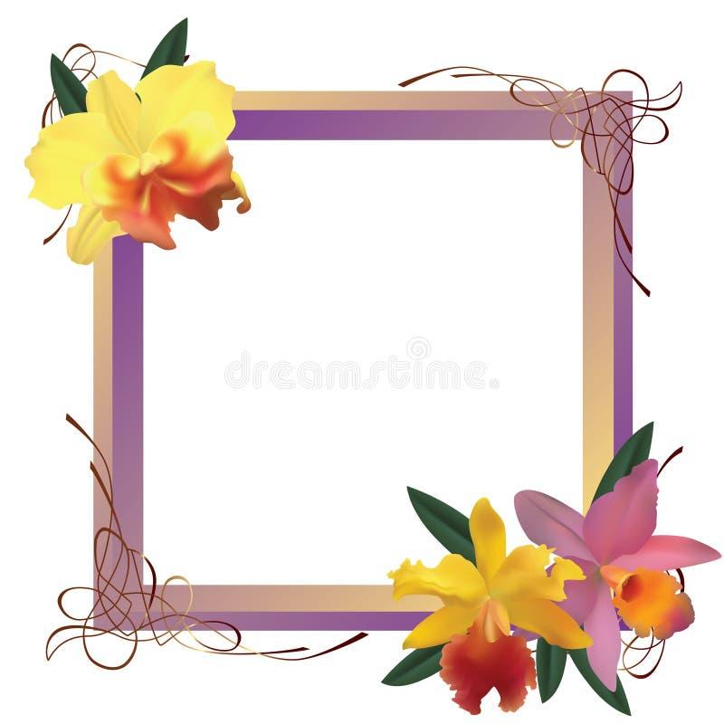Capítulo con las orquídeas libre illustration