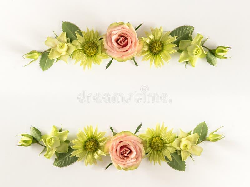 Capítulo con las rosas, las flores verdes y las hojas en el fondo blanco stock de ilustración