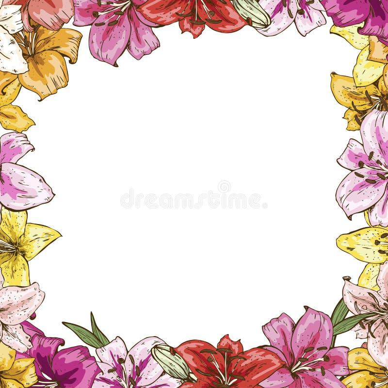 Capítulo de flores Marco hermoso de lirios coloridos Plantilla lista para su diseño, ejemplo del vector libre illustration