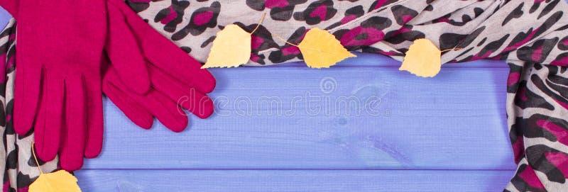 Capítulo de guantes y del mantón para la mujer, la ropa para el otoño o el invierno, espacio de la copia para el texto imagen de archivo libre de regalías