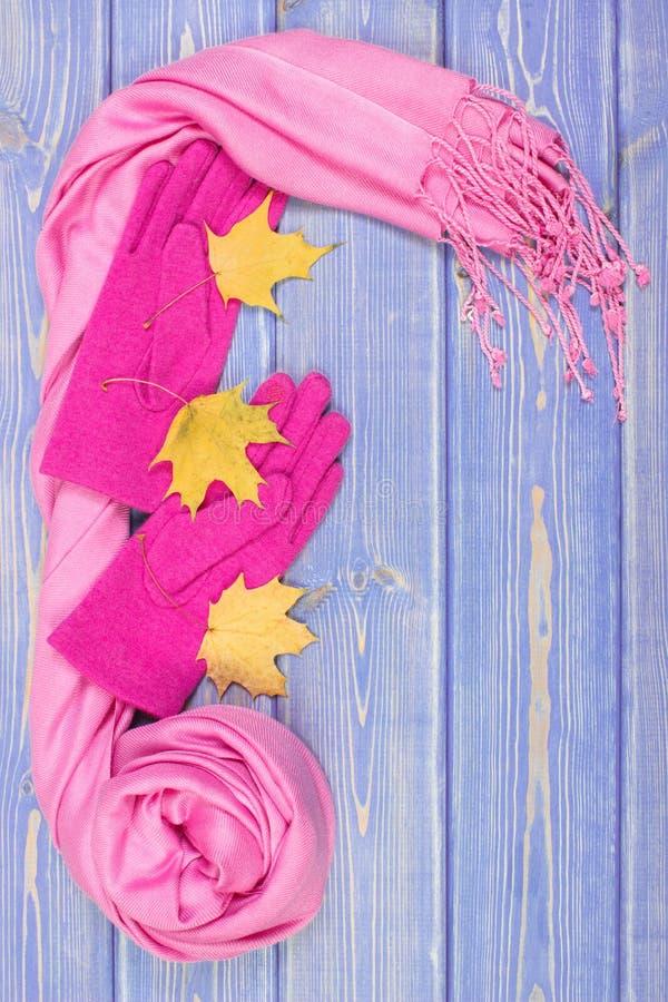 Capítulo de guantes y del mantón para la mujer, la ropa para el otoño o el invierno, lugar para el texto fotos de archivo libres de regalías