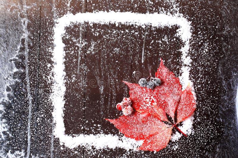 Capítulo de la nieve con una hoja roja en un folleto nevoso del invierno del fondo de madera oscuro foto de archivo