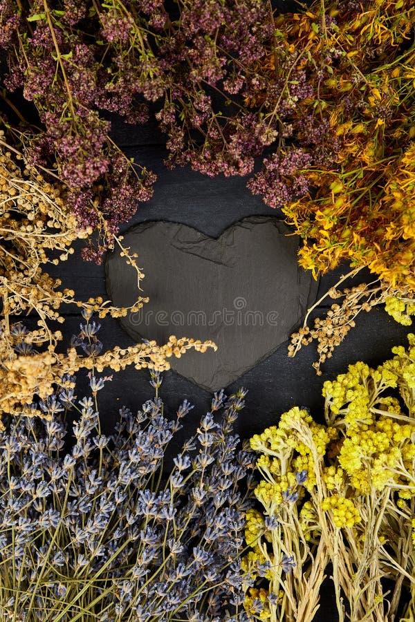Capítulo de las flores secas de las hierbas Aromatherapy medicinal foto de archivo libre de regalías