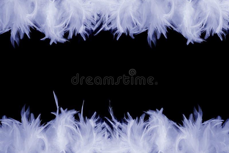Download Capítulo de plumas imagen de archivo. Imagen de cierre - 1277303