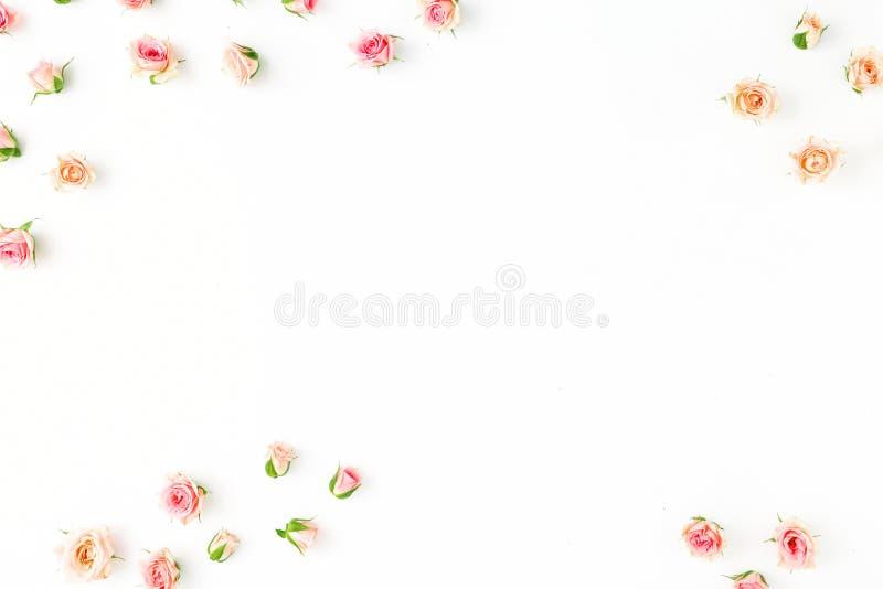 Capítulo de rosas rosadas en un fondo blanco Endecha plana stock de ilustración