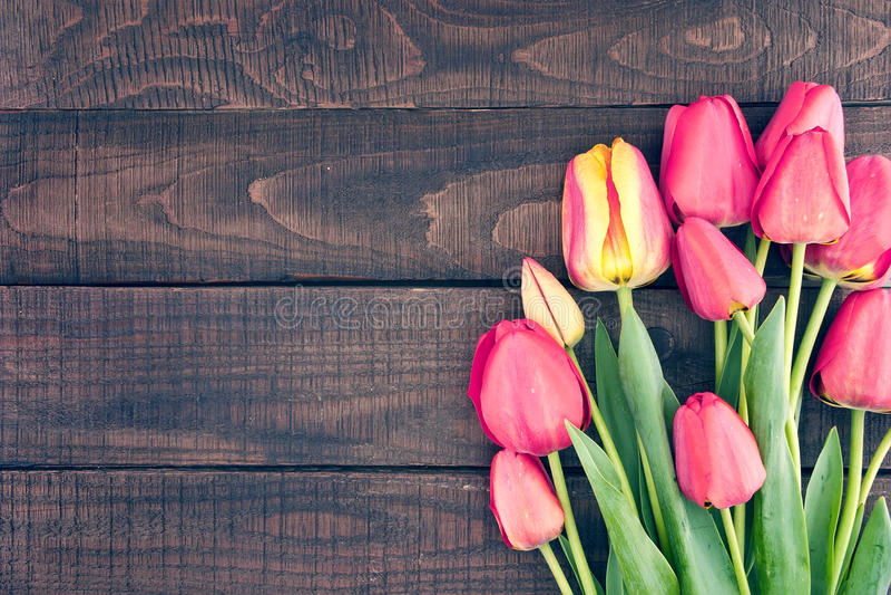 Capítulo de tulipanes en fondo de madera rústico oscuro Apenas llovido encendido foto de archivo