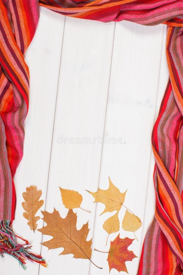 Capítulo del mantón para la mujer y las hojas el los tableros blancos, la ropa para el otoño o el invierno imagenes de archivo