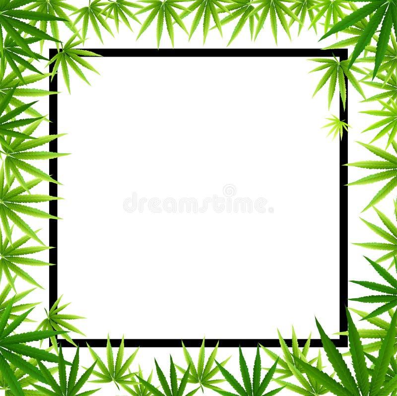 Capítulo formado con las hojas de la marijuana del cáñamo aisladas en blanco ilustración del vector