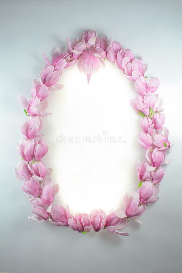 Capítulo hecho de magnolias/de diversas formas imagenes de archivo