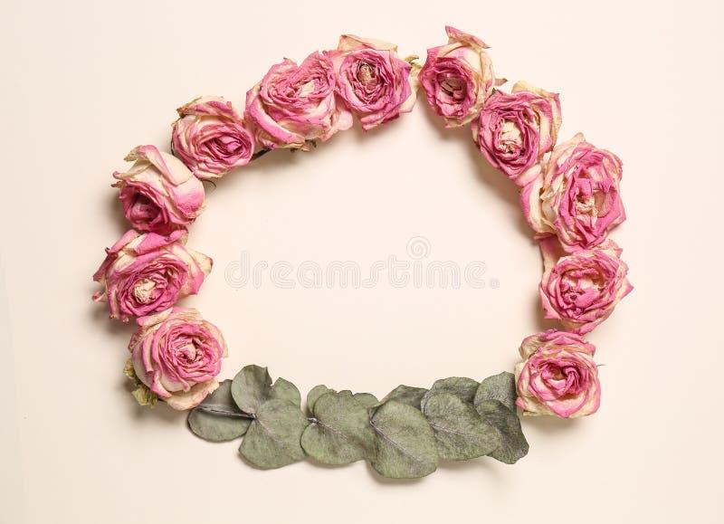 Capítulo hecho de rosas secas hermosas en el fondo blanco fotografía de archivo libre de regalías