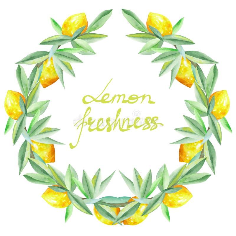 Capítulo la frontera, guirnalda de limones amarillos en las ramas con las hojas del verde pintadas en la acuarela para la tarjeta libre illustration
